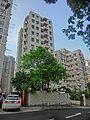 HK 天后 Tin Hau 寶雲道 Cloud View Road facades Mega Court n Highview n tree April-2014.JPG