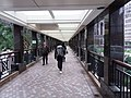 HK Wan Chai North Gloucester Road footbridge to Central Plaza December 2018 SSG visitors.jpg