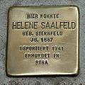 HL-024 Helene Saalfeld (1887).jpg