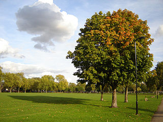 Hackney Downs park in the London Borough of Hackney