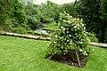Haddon Hall - Bakewell, Derbyshire, England - DSC02919.jpg