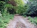 Hainault Lodge Nature Reserve - geograph.org.uk - 1290767.jpg