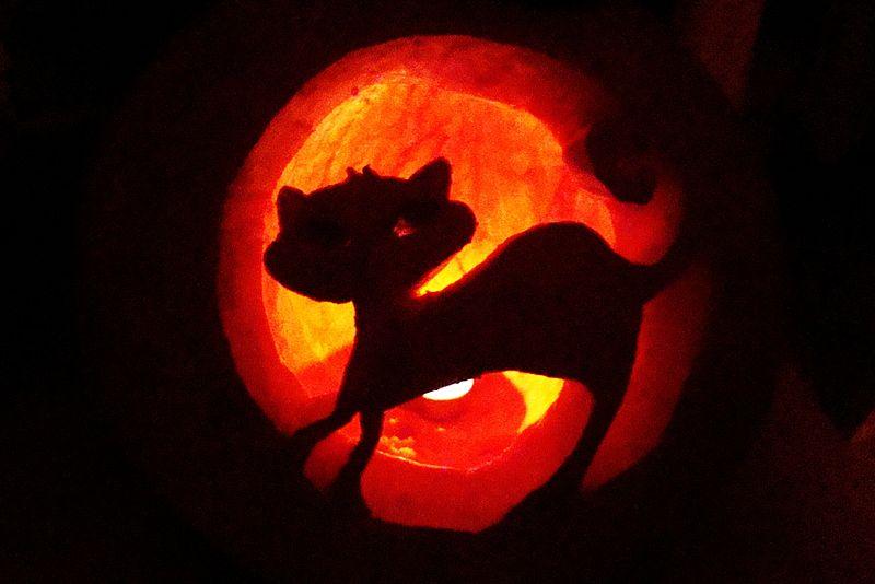 File:Halloween pumpkin, Sanok 2012.JPG