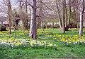 Hampden Park, near Eastbourne - geograph.org.uk - 47132.jpg