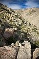 Hellhole Canyon (13496622933).jpg