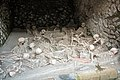 Herculaneum (25676940608).jpg