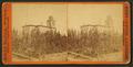 High School, by Baldwin, Schuyler C. (Schuyler Colfax), 1823-1900.png