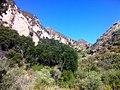 Hiking Towsley Canyon Loop (5894581087).jpg