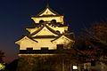 Hikone Castle light up (2117667889).jpg