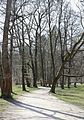 Hirschau Englischer Garten Nordteil Muenchen-10.jpg