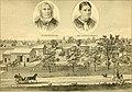History of Shiawassee and Clinton counties, Michigan (1880) (14586419050).jpg