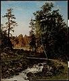 Hjalmar Munsterhjelm - A Forest Landscape from Hauho - A-1991-51 - Finnish National Gallery.jpg
