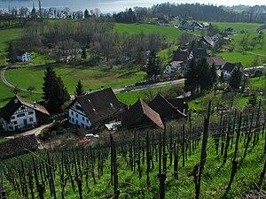 Hombrechtikon - The hamlet Schlatt between Feldbach and Kempraten, Lake Zürich in the background.