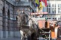 Horse and carriage (34759981381).jpg