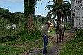 Horse at Nossa Senhora da Ajuda (Pedro Miguel), Faial Island, Azores, Portugal (PPL3-Altered) 2 julesvernex2.jpg