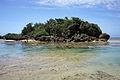 Hoshizuna-no-hama Iriomote Island05n4592.jpg