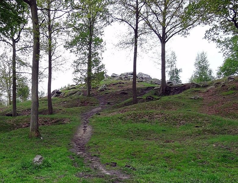 La Hottée de Gargantua (Molinchart), en France. Le sentier qui mène au sommet.
