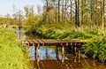 Houten bruggetje over waterloop. Locatie, natuurterrein Beekdal Linde Bekhofplas 02.jpg