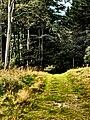Hraničný chodník - panoramio.jpg