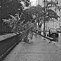 Hurricane Sandy NYC Jordan Balderas DSC 1635.jpg