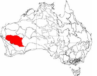 Murchison (Western Australia) region in Western Australia