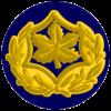 IDF RASAL Yam-2.png