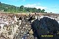 Igneous Dyke through sandstone, Corrie, Arran - geograph.org.uk - 97799.jpg