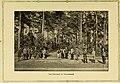 Illustrated bulletin (1917) (14598146247).jpg