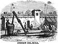 Indian Oil-Mill (p.144, 1856) - Copy.jpg