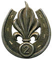 Insigne de béret du 2e REI Type 2.JPG