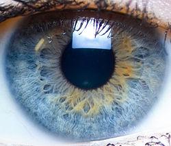 dimensiunea și vederea pupilei)