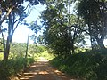 Itupeva - SP - panoramio (2989).jpg