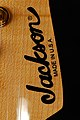 Jackson PC-1 logo on a Strat-type headstock.jpg