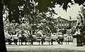 Jackson Square Bench Sitters, New Orleans, Late 1960s - Jambalaya 1968.jpg