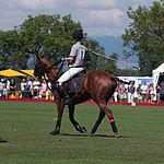 Jaeger-LeCoultre Polo Masters 2013 - 31082013 - Final match Poloyou vs Lynx Energy 6.jpg