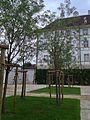 Jardins du Château de Delémont (1).JPG