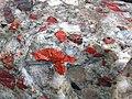 Jasper-quartz pebble conglomerate (Lorrain Formation, Paleoproterozoic, ~2.3 Ga; Ottertail Lake Northeast roadcut, near Bruce Mines, Ontario, Canada) 49 (47709511241).jpg