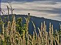Jeseň nad sídliskom Ťahanovce - panoramio.jpg