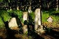 Jewish cemetery Otwock 10761382.jpg