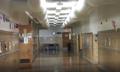 John Dewey Academy of Learning Harvey Street Hallway.png