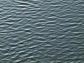 Joigny-FR-89-texture d'eau sur l'Yonne-a1.jpg