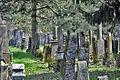 Judenfriedhof endingen1.jpg