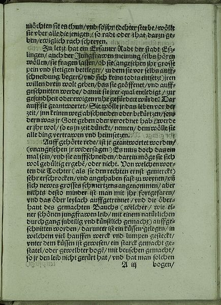 File:Jungfrawen zu Eszlingen 1033.jpg