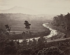 KITLV 115047 - Isidore van Kinsbergen - Sawah with river at Buitenzorg - Around 1880.tif
