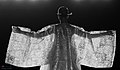 KOCIS Korea Hanbok-AoDai FashionShow 66 (9766362815).jpg