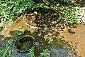 Kakitagawa Park Wakima Springs 1.jpg
