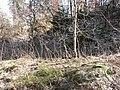 Kapellenberg Vogtl 076.JPG