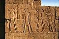 Karnak-34-Relief-Ibis-Geier-Koenig-1982-gje.jpg