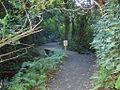 Karori Trail - Flickr - Teacher Traveler (1).jpg