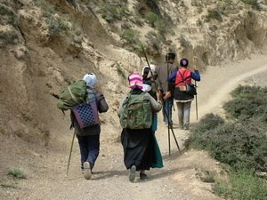Kora (pilgrimage) - Pilgrims on the Kawa Karpo Kora circuit, an arduous 240 km (150 mi) 12-stage trek across six high passes of up to  4,800 meters (15,800 feet).